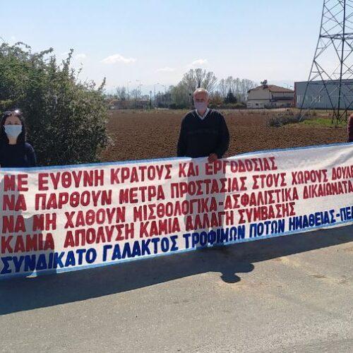 Περιοδεία της Πανελλήνιας Ομοσπονδίας Γάλακτος Τροφίμων και Ποτών σε Ημαθία και Πέλλα