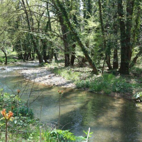 Τριπόταμος.Οι δυο όψεις του ποταμού της Βέροιας: Ομορφιά της φύσης - Ανθρώπινη εγκατάλειψη