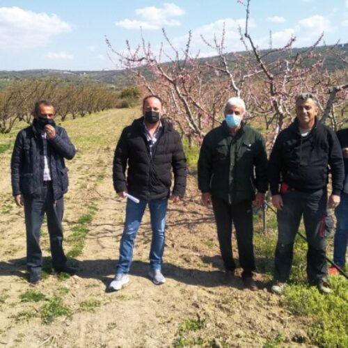 Πέλλα - Ημαθία: Περιοδεία του ΚΚΕ και συναντήσεις με αγρότες που επλήγησαν από τον πρόσφατο παγετό
