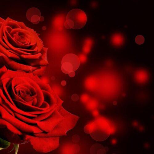 ΣΥΡΙΖΑ - ΠΣ Ημαθίας: Με βαθιά θλίψη αποχαιρετούμε έναν ξεχωριστό σύντροφο, τον Χρυσόστομο Κορτσινίδη