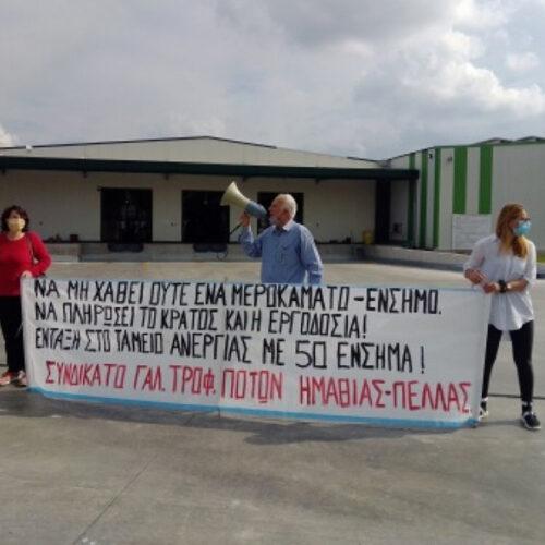 Συνδικάτο Γάλακτος Ημαθίας - Πέλλας: Καταγγελία για απολύσεις