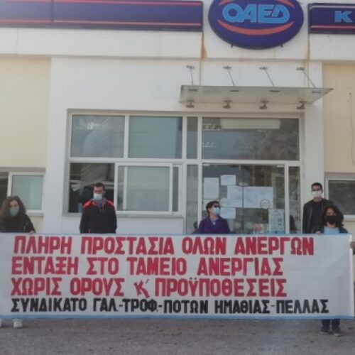 Αναφορά του Συνδικάτου Γάλακτος Ημαθίας – Πέλλας κατέθεσαν βουλευτές του ΚΚΕ