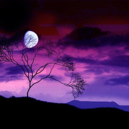 """Νυχτερινός απόπλους - """"Γύρνα φτερωτή του μύλου"""": Μάνος Χατζιδάκις / Λόρκα / Γρηγόρης Βαλτινός"""
