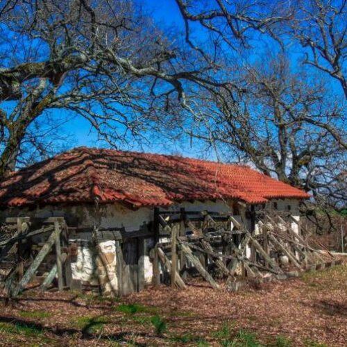"""Βιβλιοπαρουσίαση: Γιώργου Σιώμου """"μικρά πεζά"""" γράφει ο Στέργιος Πουρνάρας"""