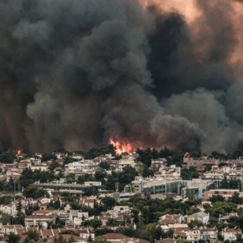 Φωτιές / Εισαγγελική παρέμβαση: Ζητά έρευνα για σχέδιο εμπρησμών από εγκληματική οργάνωση
