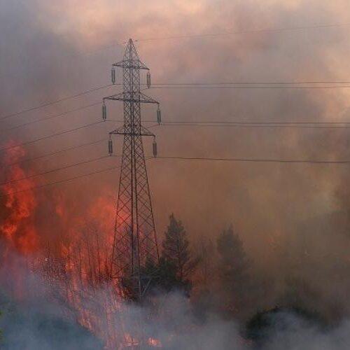 Έλληνες και Κύπριοι Δικηγόροι στο πλευρό των πληγέντων από τις πυρκαγιές