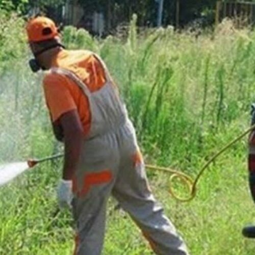 Δήμος Βέροιας: Ψεκασμός για τα κουνούπια στην Πατρίδα / βράδυ Δευτέρας, 23 Αυγούστου