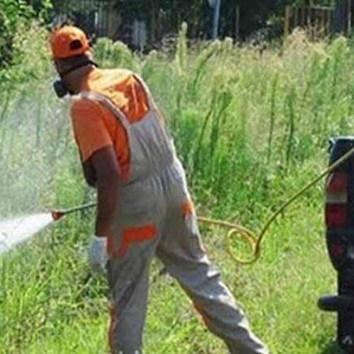 Δήμος Βέροιας: Πρόγραμμα επίγειας καταπολέμησης κουνουπιών 30 Αυγούστου έως 3 Σεπτεμβρίου 2021