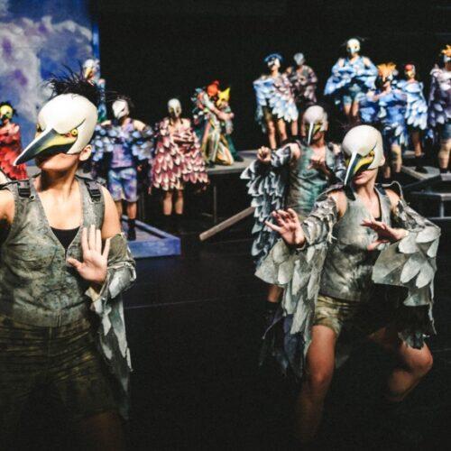 Οι «Όρνιθες» του ΚΘΒΕ για 2η χρονιά απογειώνουν τους θεατές