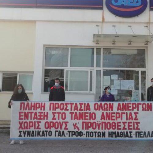 Συνδικάτο Γάλακτος Ημαθίας - Πέλλας: να μην πληρώσουν τις συνέπειες των φετινών καταστροφών οι εργαζόμενοι